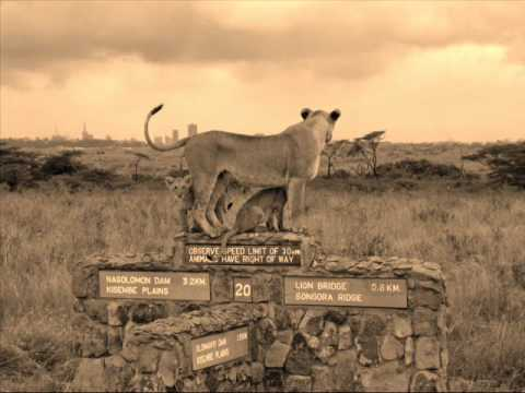 A lioness stands atop a concrete and stone multidirectional sign within the Nairobi National Park