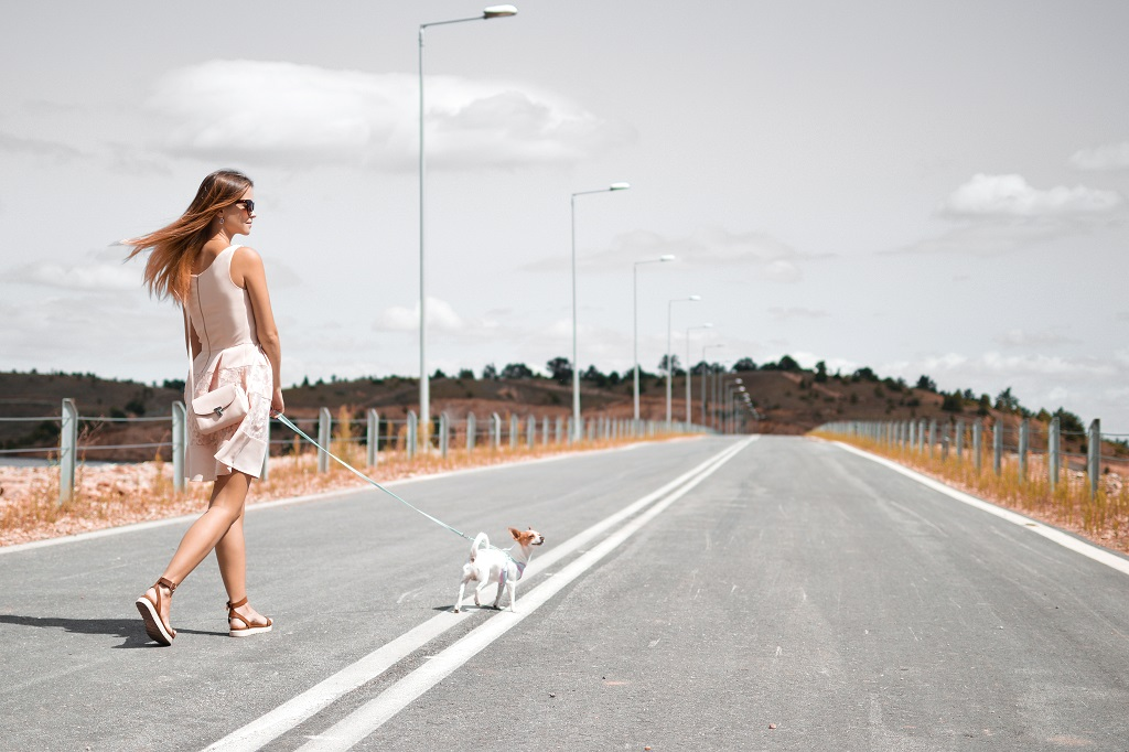 simple activities like walking your dog as this woman in this picture should help one reap the health benefits of walking