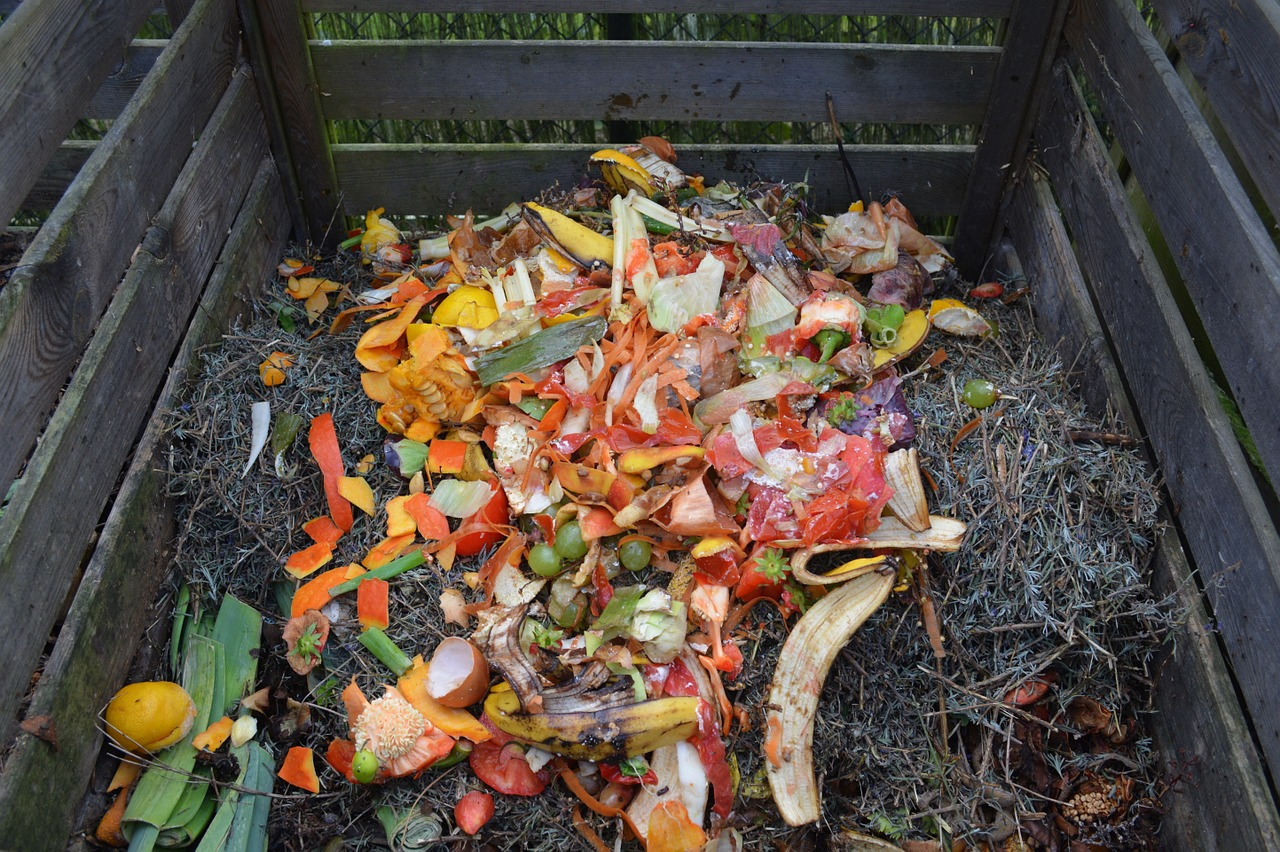wooden crate with kitchen waste exhibiting home composting