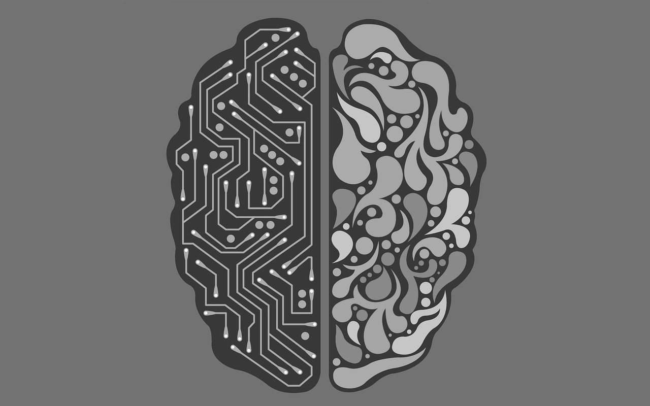 human brain with one hemisphere consisting of a mother board cuircuit representing harmony between AI and humanity possible with the AI principles