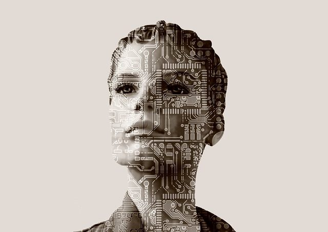 An artist's work of a woman's face embossed with a network of microchips depiction what an Artificial Inteliigence future might mean for personhood.